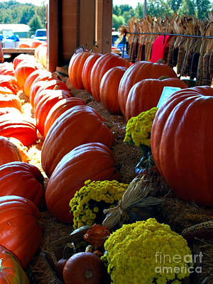 Photograph - Autumn Pumpkins by Linda Cox