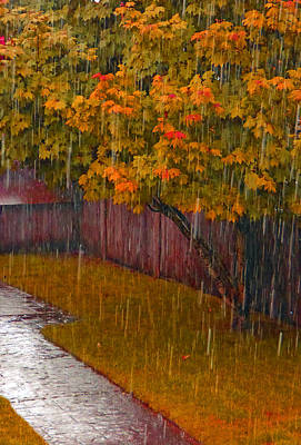 Photograph - Autumn Rain by Laurie Tsemak