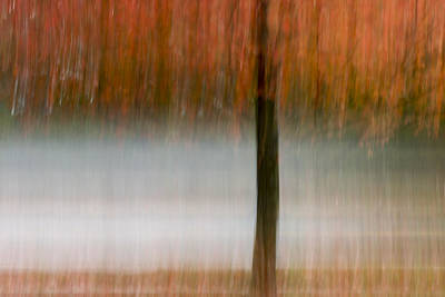 Maple Leaf Art Photograph - Autumn Rain by Terry DeLuco