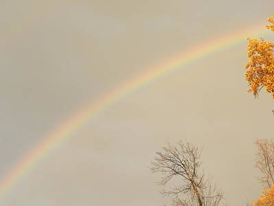 Photograph - Autumn Rainbow by Cim Paddock