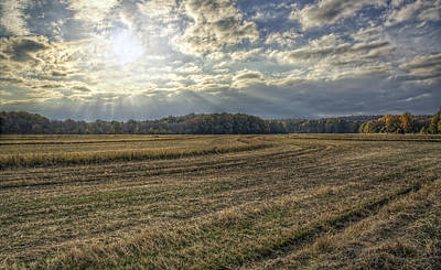 Photograph - Autumn Rays by Jason Politte