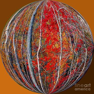 Autumn Reds Print by Scott Cameron