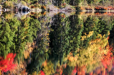 Autumn Refection At Buttermilk Falls Art Print by Art Spearing