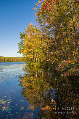 Photograph - Autumn Reflection 2 by Rima Biswas