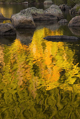 Photograph - Autumn Reflection Abstract by Morris  McClung