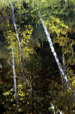 Photograph - Autumn Reflection by Curtis Dale