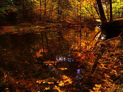 Photograph - Autumn Reflection by Deena Stoddard