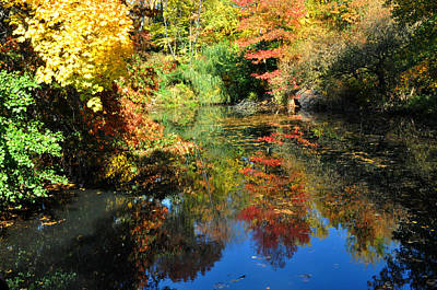 Photograph - Autumn Reflection by Diane Lent