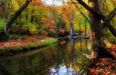 Photograph - Autumn Reflection In North Georgia by Greg Mimbs