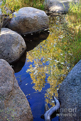 Photograph - Autumn Reflection by Karen Lee Ensley