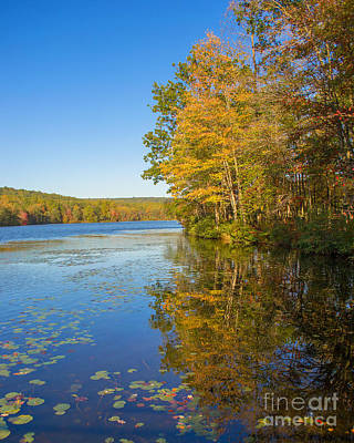 Photograph - Autumn Reflection by Rima Biswas
