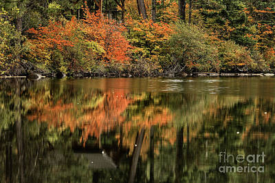 Photograph - Autumn Reflection by Stuart Gordon