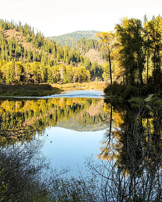 Autumn Reflections 3 Art Print by Curtis Stein