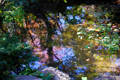 Koi Digital Art - Autumn Botanic Garden Reflections  by Nancy Mueller