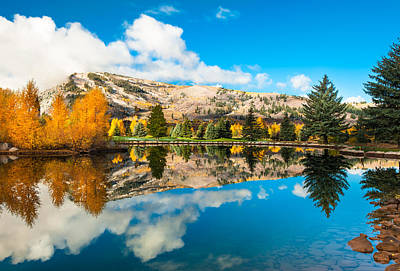 Photograph - Autumn Reflections - Aspen Colorado by Gregory Ballos