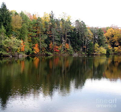 Leaves Photograph - Autumn Reflections At The Reservoir by Rose Santuci-Sofranko