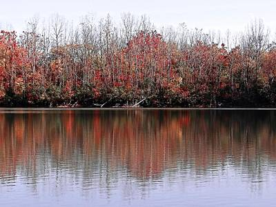 Photograph - Autumn Reflections by Beth Akerman