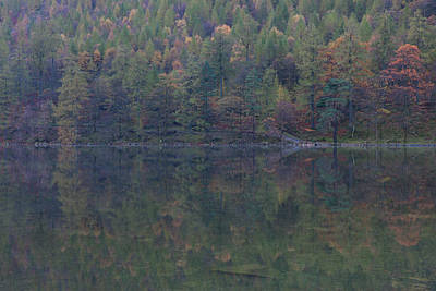 Photograph - Autumn Reflections Buttermere by Nick Atkin