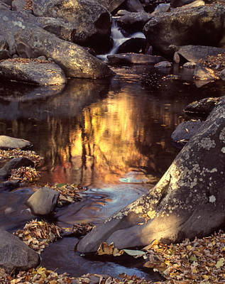 Photograph - Autumn Reflections by Harold Rau