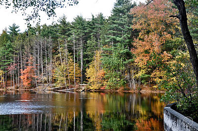 Photograph - Autumn Reflections I by Healing Woman