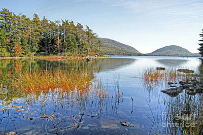 Photograph - Autumn Reflections In Acadia. by David Birchall