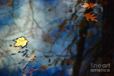 Photograph - Autumn Reflections by Jason Kolenda