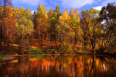 Photograph - Autumn Reflections by Jenny Rainbow