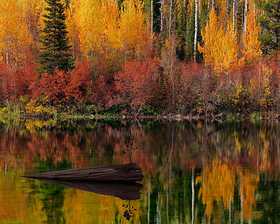 Restful Photograph - Autumn Reflections by Leland D Howard