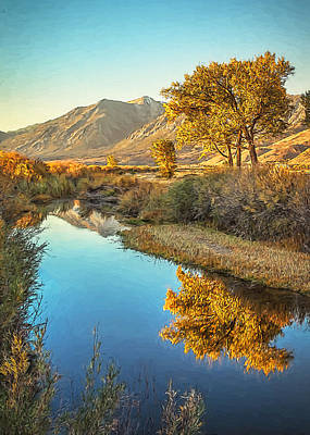 Photograph - Autumn Reflections by Maria Coulson