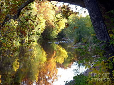 Photograph - Autumn Reflections by Marlene Rose Besso