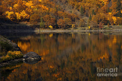 Autumn Reflections Art Print by Mike  Dawson