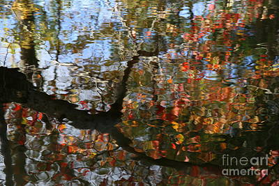 Photograph - Autumn Reflections  by Neal Eslinger