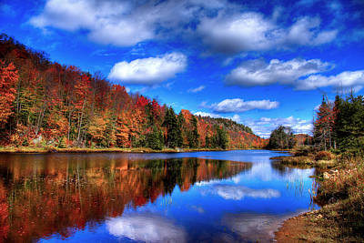 Reflection On Pond Photograph - Autumn Reflections On Bald Mountain Pond by David Patterson