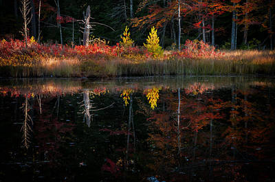 Photograph - Autumn Reflections - Red Eagle Pond by Expressive Landscapes Fine Art Photography by Thom