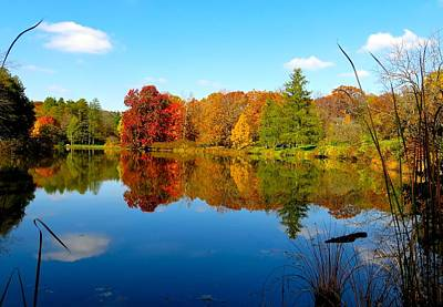 Photograph - Autumn Reflections by Rita Mueller