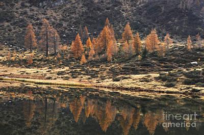 Photograph - Autumn Reflections by Simona Ghidini