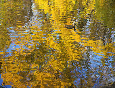 Photograph - Autumn Reflections by Vladimir Kholostykh