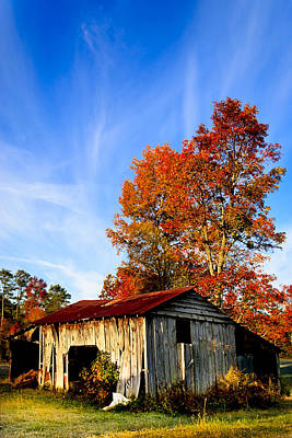 Photograph - Autumn Remembered In North Georgia by Mark E Tisdale