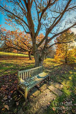 Lawn Digital Art - Autumn Rest by Adrian Evans