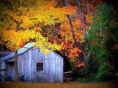 Autumn Rest Art Print by Trish Clark