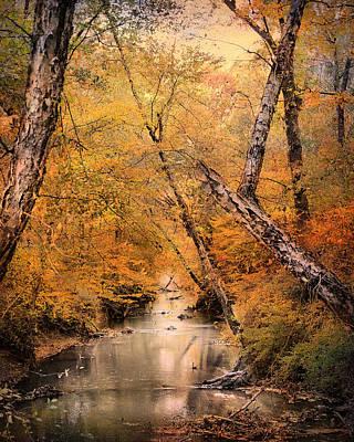 Autumn Riches 1 Art Print by Jai Johnson