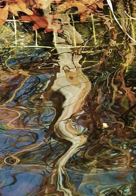 Photograph - Autumn Ripples 2 by Todd Sherlock