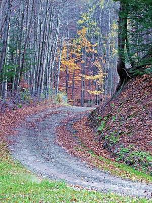 Photograph - Autumn Rising by Christian Mattison