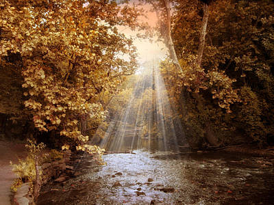 Photograph - Autumn River Light by Jessica Jenney