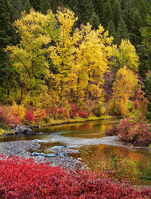 Vivid Fall Colors Photograph - Autumn River by Mary Jo Allen