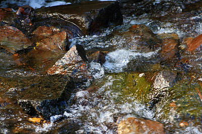 Photograph - Autumn River Rocks  by Liz Evensen
