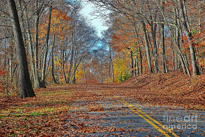 Photograph - Autumn Road by Allen Beatty