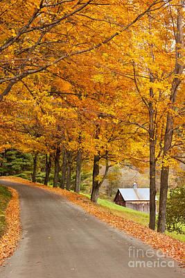 Photograph - Autumn Road by Brian Jannsen