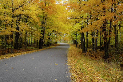 Bliss Michigan Photograph - Autumn Road by Hans Castleberg