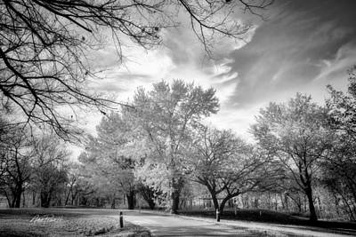 Photograph - Autumn Road In Black And White - Photography by Ann Powell